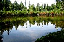 Lake between trees, Retezat mountains·, Photo: Alexandru Moțoc