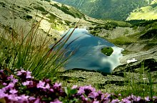 Tapului tó, Retyezát hegység., Fotó: Mihai Bursesc