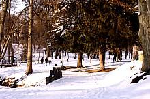 Parcul Sub Arini, Sibiu, Foto: Ovidiu Sopa