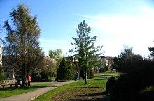 Botanic park, Timișoara·, Photo: Marian Ghibu