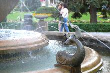 Fountain with Fish, Timișoara·, Photo: Marian Ghibu