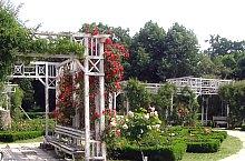 Parcul Rozelor, Timisoara, Foto: Ovidiu Nicorici