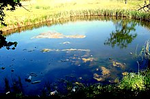 Lacul Băltoaca, Foto: Ana Maria Catalina