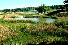 Lacul Mocirlos, Foto: Ana Maria Catalina