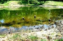 Lacul Privighetorii, Foto: Ana Maria Catalina