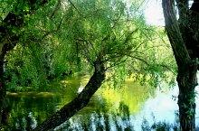 Lacul Troacelor, Foto: Ana Maria Catalina