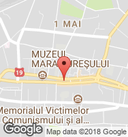 Google Static Map